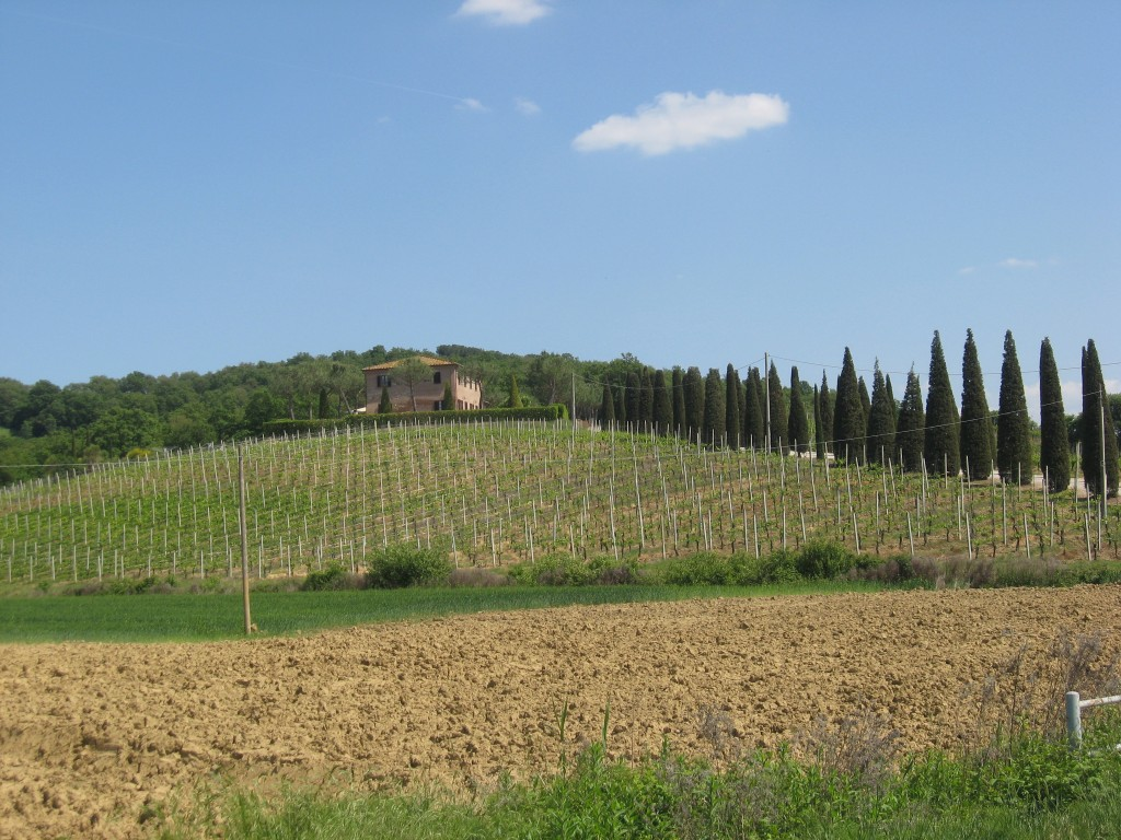 Bed and Breakfast in Montepulciana-Casa Di Bacco-View from road