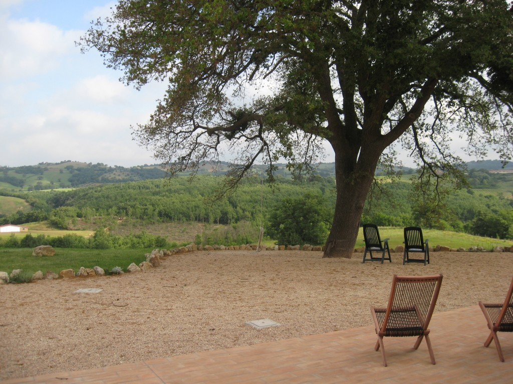 Bed and Breakfast in Maremma: In front of the apartment