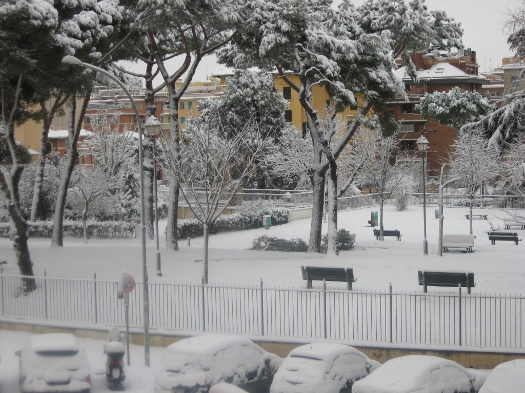 Snow in Rome 2012: Covered in Snow
