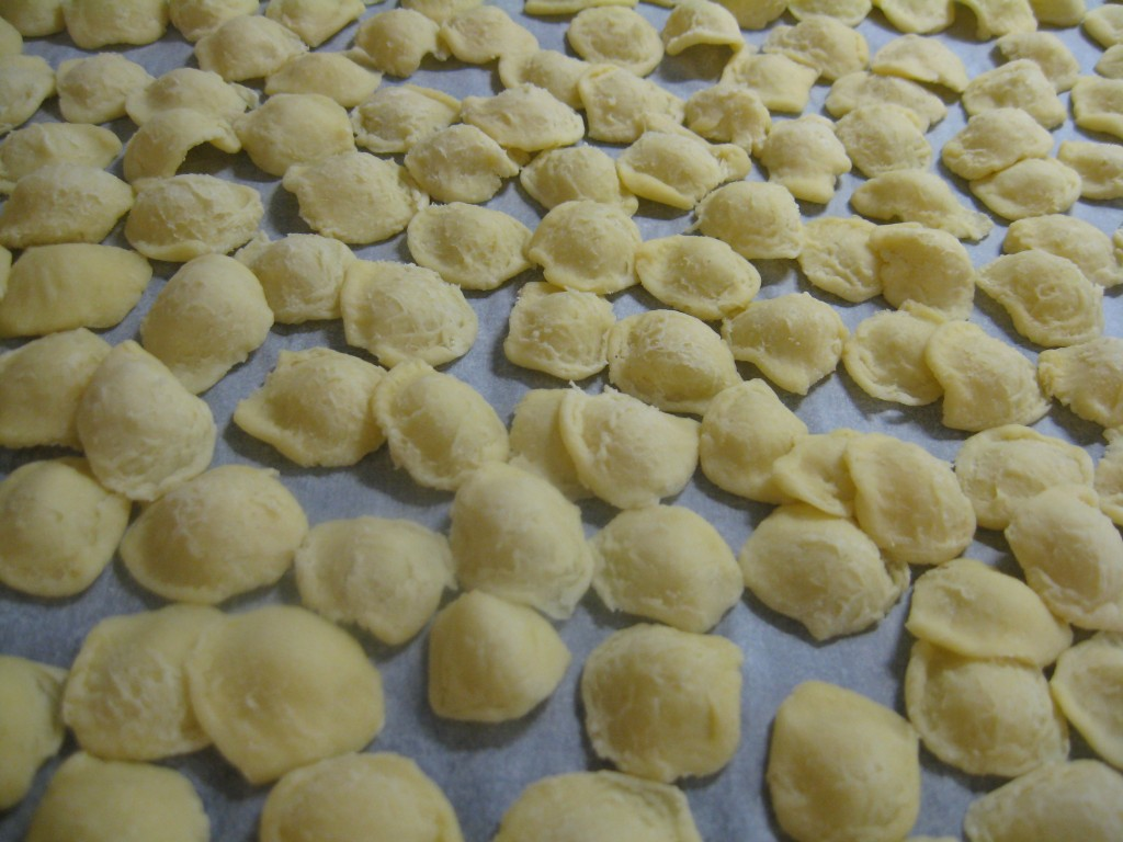 Orecchiette Pasta: First Attempt