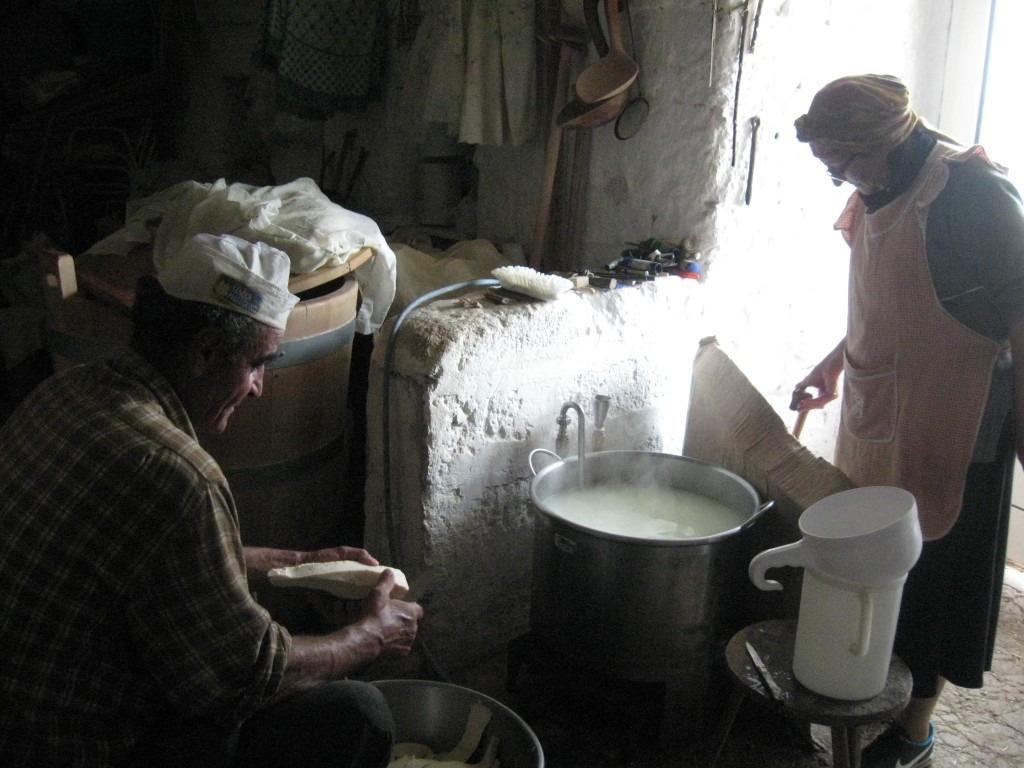 Matera Italy: Shepherd making cheese
