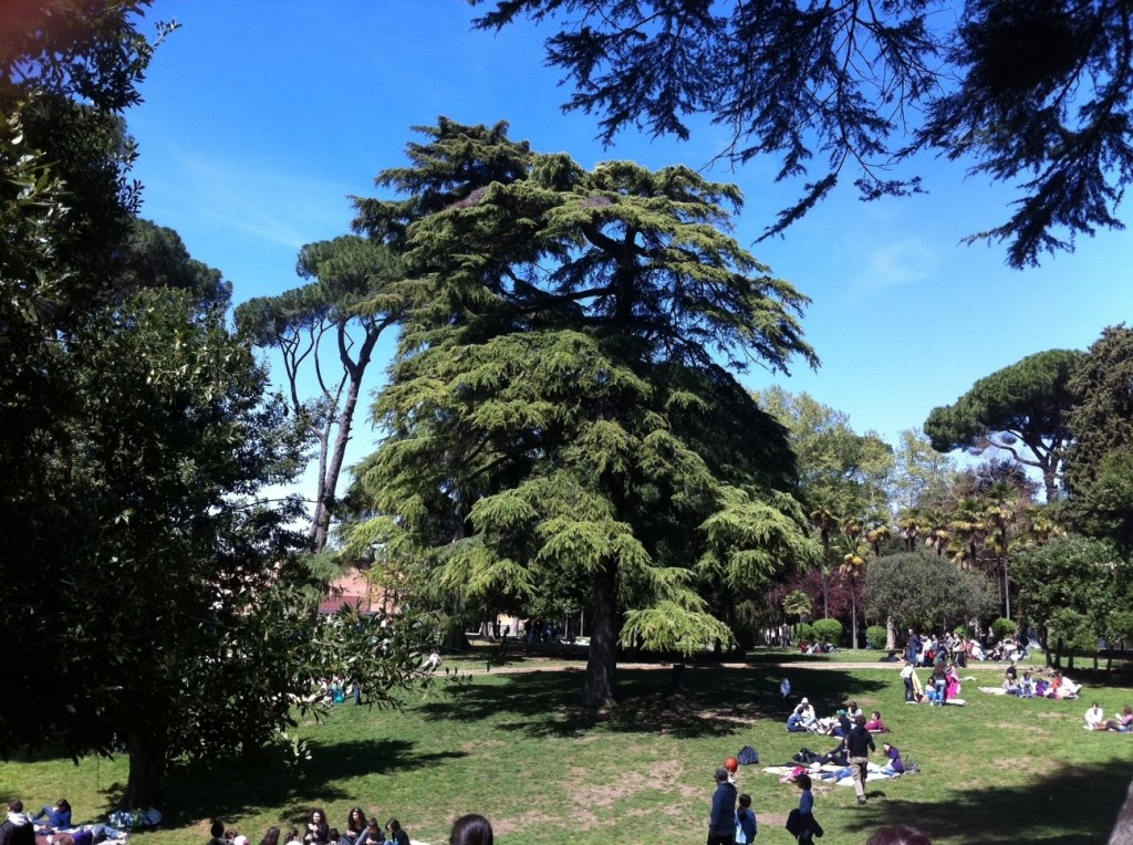 Hottest June in Rome Italy - Parks - Weekends at Villa Celimontana