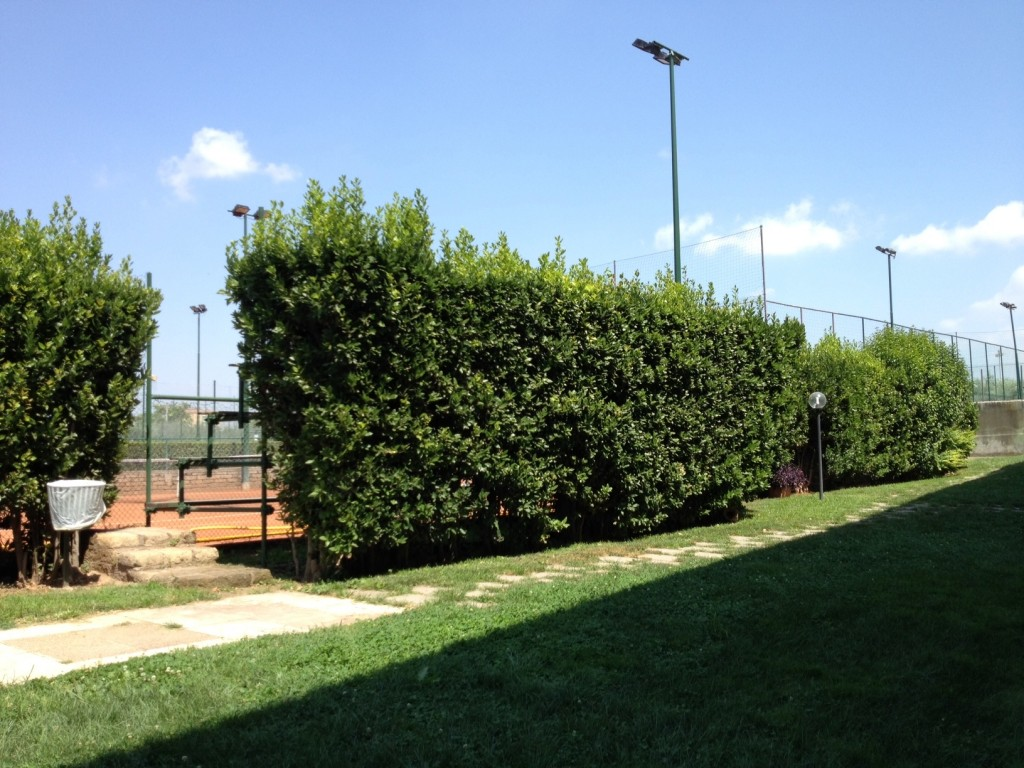 Summer in Rome - Club - Tennis Courts