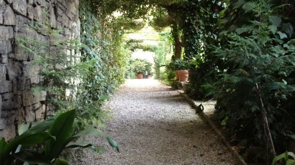 Hidden Gems in Todi, Italy