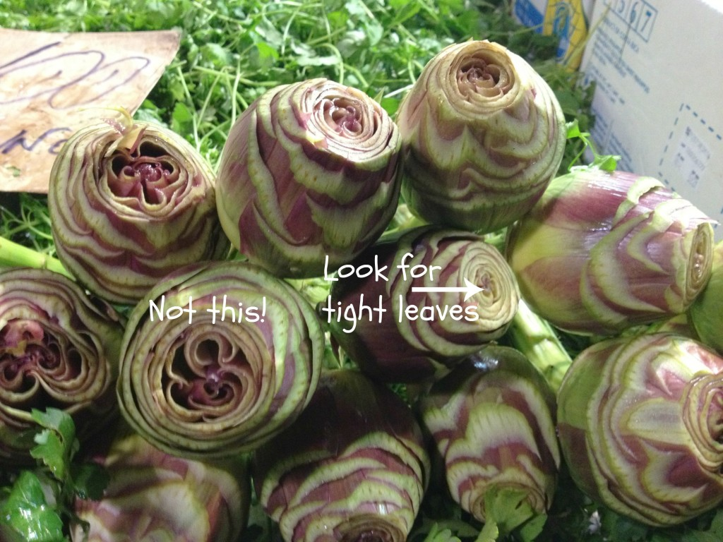 How to pick artichokes - Rome Food Tour with Tavole Romane